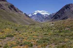 Argentina Andes Valley