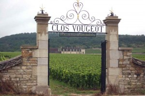 Clos Vougeot vineyards
