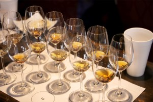 Great Brandies of France