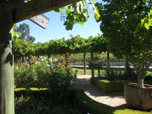 At the Justin Winery in Paso Robles