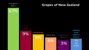 New Zealand SB grapes