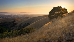 Hillsides of Contra Costa County at sunset