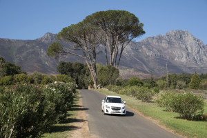 Along the Cape Wine Route in Stellenbosch