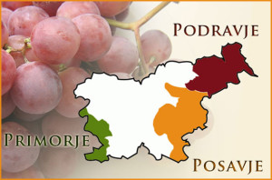 Wine map of Slovenia via: http://www.slovenianpremiumwines.com/wine-regions/