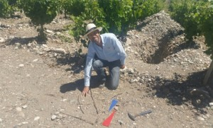 Martin Kaiser explaining—with twigs and flags—the effect of climate and altitude at the highest point of the Alluvia Vineyard in Gualtallary